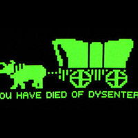 Oregon Trail You Have Died Of Dysentery Cross Stitch Pattern | Los Angeles Needlework