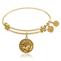 Expandable Bangle in Yellow Tone Brass with Capricorn Symbol