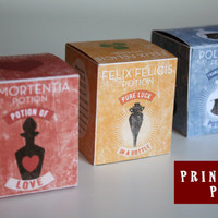 Harry Potter 3 Potion Square boxes Printable PDF DIY -  Polyjuice Potion Amortentia Felix Felicis
