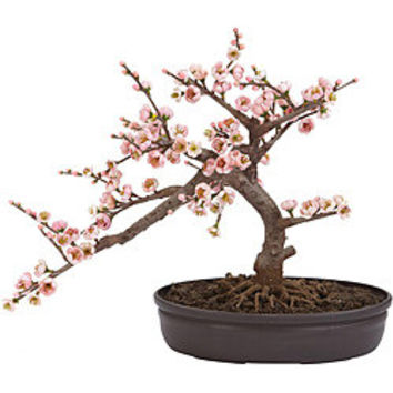 Silk 15-inch Potted Cherry Blossom Bonsai Plant | Overstock.com