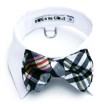 White Shirt Collar + Black & White Madras Bow Tie