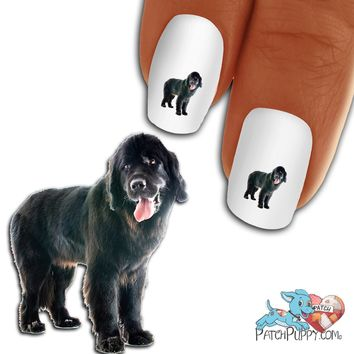 Newfoundland side stance Nail Art (NOW 50% MORE FREE)