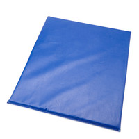 Whitney Brothers Soft Blue Floor Mat for the WB0210 Cube