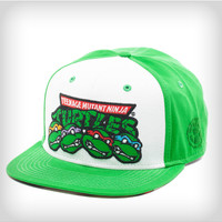 Teenage Mutant Ninja Turtles 'Group' Snapback Hat