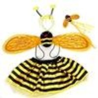 Bee Costume  comes with Wings Tutu Headband and Wand