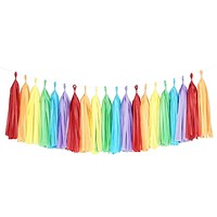 Rainbow Tassel Garland Banner Party Decoration