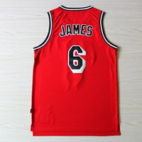 LeBron James Miami Heat #6 Red Sports NBA Basketball Jersey LeBron James Miami Heat Rare Jersey All Stitched and Sewn Any Size S - XXL