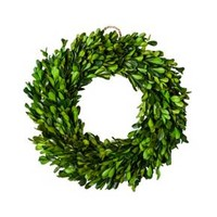 """Preserved Boxwood Leaves Wreath (10.75"""") - Smith & Hawken™"""