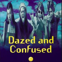 Dazed And Confused Movie Poster 24inx36in