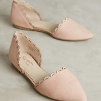 Seychelles Research Scalloped Flats