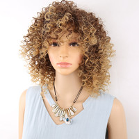 Amir Curly Synthetic Fluffy Wigs