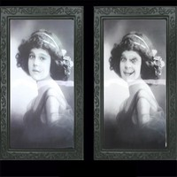 3D Vintage Photo Frame Pictures Frames Changing Face Ghost Halloween Decor Horror Props Bar Haunted Decor #11020