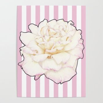 Pale Rose on Stripes Poster by drawingsbylam
