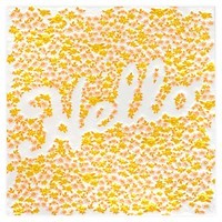 Blooming Hello Card