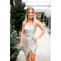 Isn't She Iconic Dress (Nude/Silver) FINAL SALE