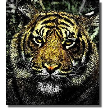 Tiger Head Picture on Stretched Canvas, Wall Art Decor Ready to Hang!.