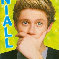 """NIALL HORAN - ONE DIRECTION - 1D - 11"""" x 8"""" MAGAZINE PINUP - POSTER - 002"""