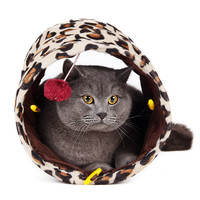 Cat Toy - Mini Tunnel with Ball