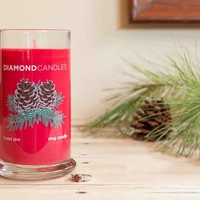 Frosted Pine Ring Candle