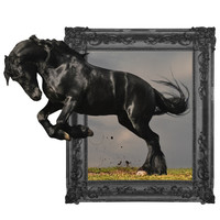 Out of Frame Dark Horse wall decal