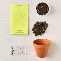 Grow Your Own Aloe Plant Kit   Urban Outfitters