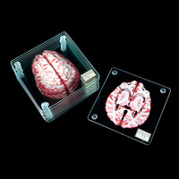 These Cerebral Coasters Stack Up To Look Like A Brain