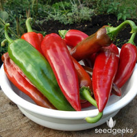 Anaheim Chili Pepper Heirloom Seeds - Non-GMO, Open Pollinated, Untreated