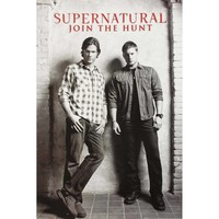 Supernatural: The TV Series Domestic Poster