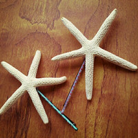 Pencil Sea Star Bobby Pins