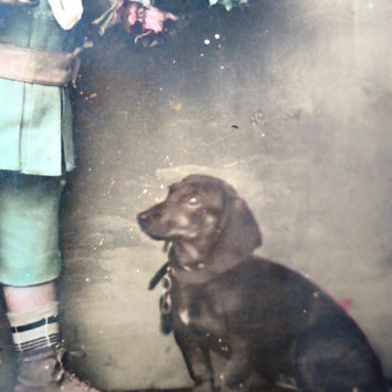 Antique french dog postcard - Teckel dog child, flowers, glossy, hand tinted, 1900