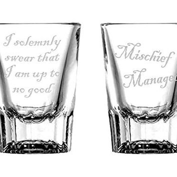 Mischief Managed Shot Glass Set for fans of Harry Potter
