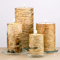 Birch Pillar Candles | Candles & Home Fragrance| Home Decor | World Market