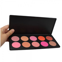 New 10 Color Makeup Cosmetic Blush Palette + Free Shipping