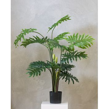 """60"""" Philodendron Plant on Pot - Tropics Collection"""