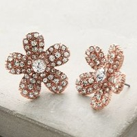 Shimmered Daisy Posts by Anthropologie in Rose Gold Size: One Size Earrings