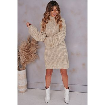 Knit Decision Turtleneck Sweater Dress (Taupe)