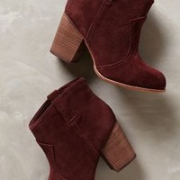 Grammar Booties by Splendid