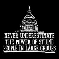 NEVER UNDERESTIMATE THE POWER OF STUPID PEOPLE IN LARGE GROUPS FUNNY T-SHIRT(WHITE INK)