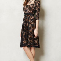 NWT ANTHROPOLOGIE by MARC BOUWER MADE IN KIND SAVA LACE DRESS 4