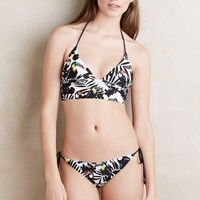 Shoshanna Toucan Side-Tie Bikini Bikini Bottom in Black & White Size:
