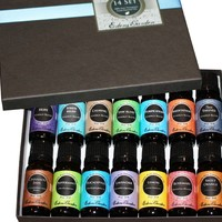 6) Synergy Blends and 6) Top Single Oils 100% Pure Therapeutic Grade Essential Oils- 12/ 10 ml of Breathe Easier, Cinnamon Leaf, Eucalyptus, Fighting Five (previously known as Four Thieves), Hope, Lavender, Lemon, Peppermint, Purify, Stress Relief, Sunshin