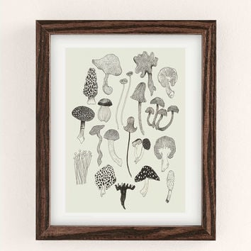 Caitlin Foster Hanks Field Guide Art Print - Urban Outfitters