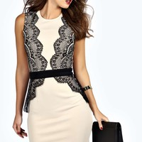 Jazlyn Contrast Eyelash Lace Bodycon Dress