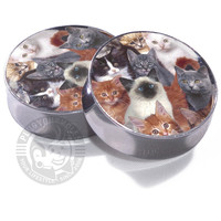 Cats on Cats on Cats - Image Plugs