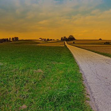 Country road on a summer afternoon   landscape photography Art Print by Patrick Jobst