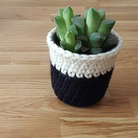Succulent - Mother's Day Gift - Mothers Day Planter - Succulent Planter - Decortive Succulent Pot - Desk Succulent Pot - Pot Cozy - Planter