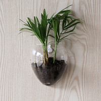 High Above It All Wall Hanging Glass Planter