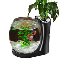Betta Fish Bowl & Planter Desktop Tank .75 gal Black