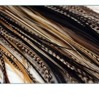 "NEW 7""-11"" Feather Hair Extension Beige,Blond,Black,Browns & Grizzly Featehrs (5 Feathers Bonded At the Tip)"