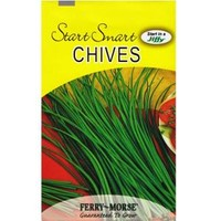 Ferry-Morse, 750 mg Chives Seed, 2014 at The Home Depot - Mobile